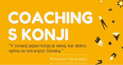 Coaching s konji in Insights