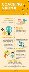 Coaching s konji Insights - infografika