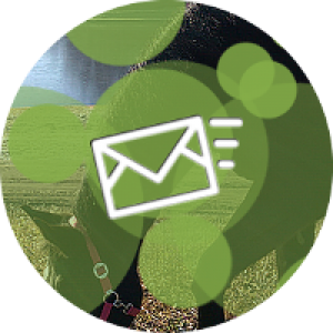coaching-za-podjetja-kontakt-zelena-200px
