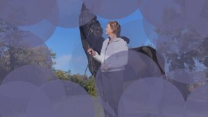 individualni-coaching-insights-konj-natalie-2