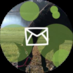 insights-coaching-kontakt-small-zelena