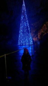 Novoletna jelka z modro svetlobo